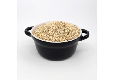 Quinoa - 100 gr - Bio