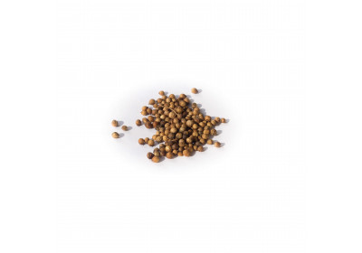 Grains de coriandre - 20 gr