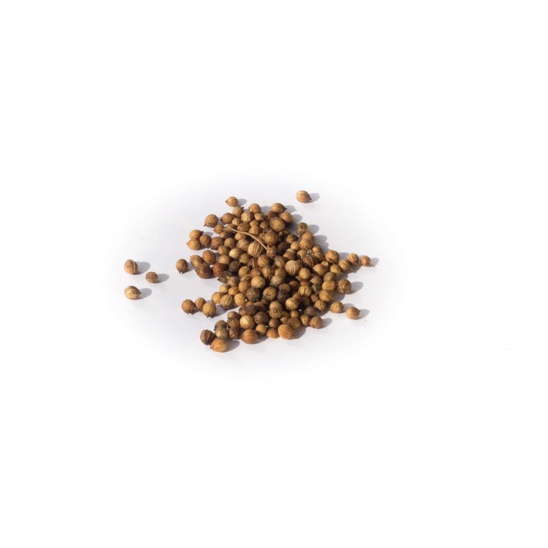 Grains de coriandre - 20 gr - Bio