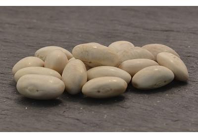 Haricots blanc - 100 gr - Bio