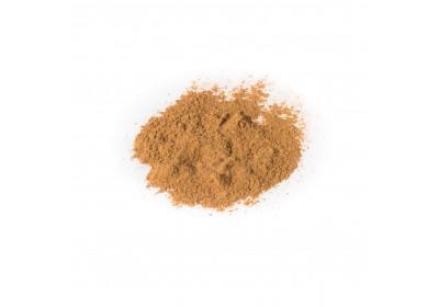 Cannelle en poudre - 20 gr - Bio